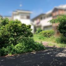 下川原 草刈り作業
