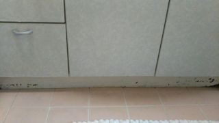 洗面前板腐食 清水区