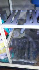 食洗機取替 清水区 排水