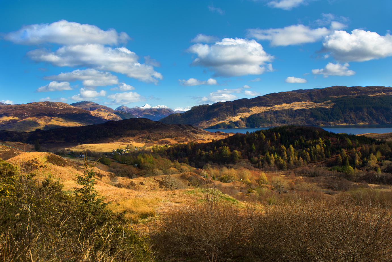 Scotland 2013-2