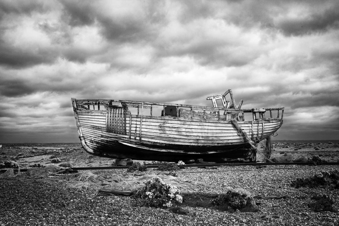 Dungeness May 2014-1b.jpg