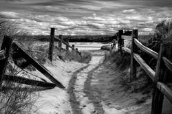 Beach Path Michigan 2015-2b