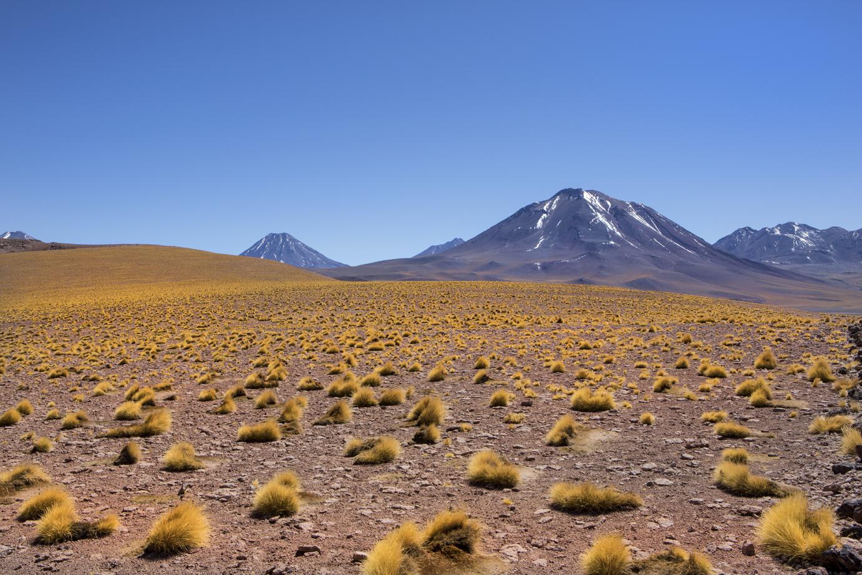 Atacama-1