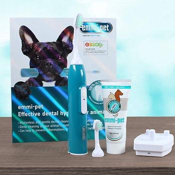 emmi-pet-teeth-cleaning.jpg