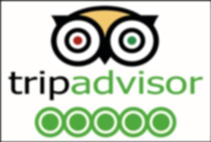 TripAdvisor-5-Star-300x202-1-300x202.png