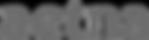 aetna-grey-1024x275.png