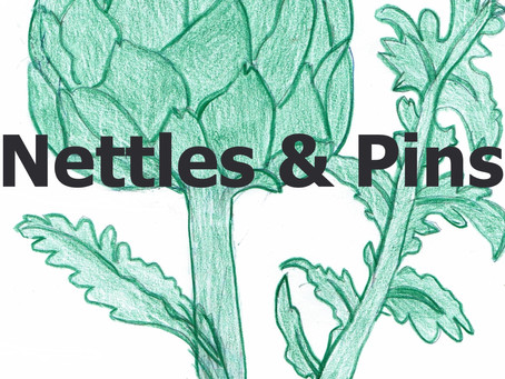 Nettles and Pins: A Sustainable Eco-Friendly Business