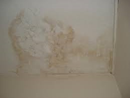 Water Stains in Ceilings and Walls Treatment.