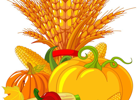 Virtual Sunday School: Harvest Thanksgiving