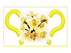 202102 St M Spring Quiz logo.png