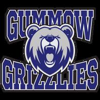 CR Gummow Public School
