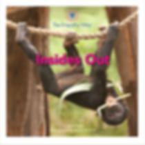 Bonobo Monkey Climbing Tree Empathy Children's Book