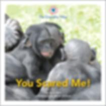 Bonobo Scared Childrens Book Empathy