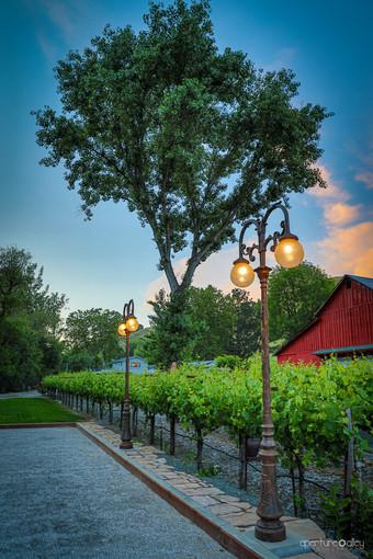 Twining Vine Winery