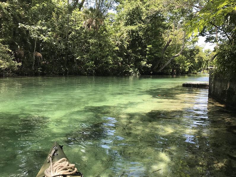 Florida dive