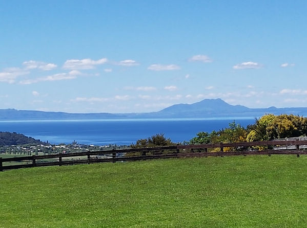 Lakeview Cottage Taupo