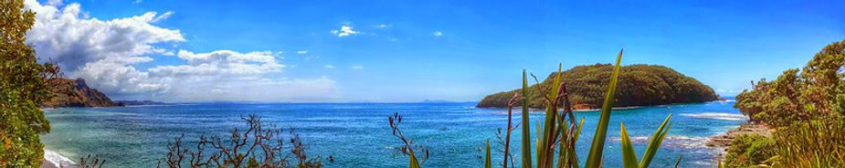 Goat Island Marine Reserve By Lesslee D (Flickr).jpg