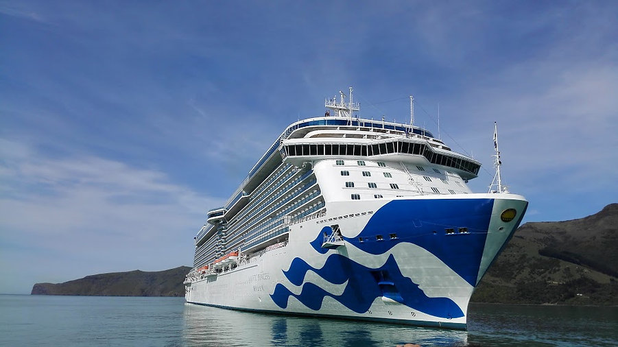 Majestic Princess Cruise Ship.jpg