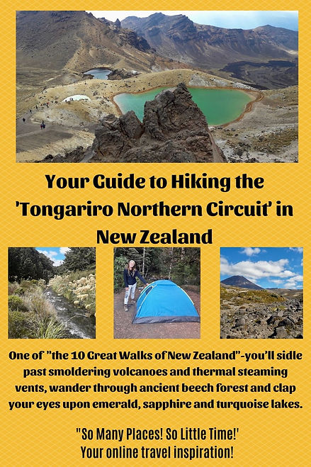 Pinterest 1- Tongariri Northern Circuit.