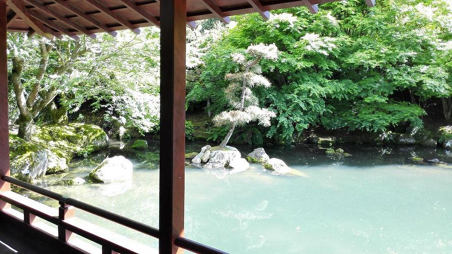 Japanese Garden of Contemplation 1