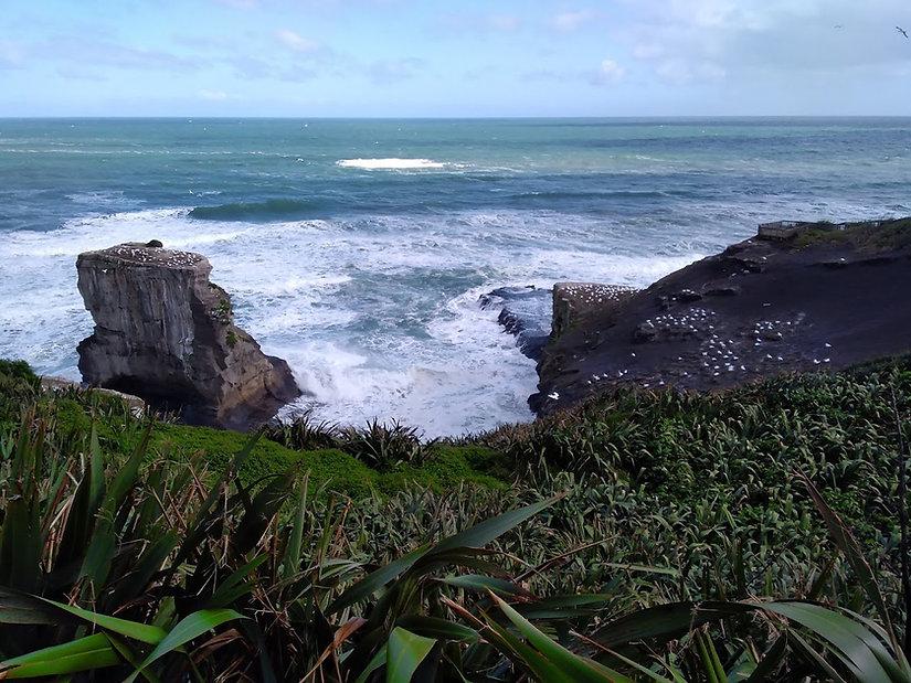 Muriwai Beach.jpg