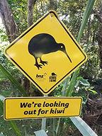 AROHA ISLAND- Kiwi Signs.jpg
