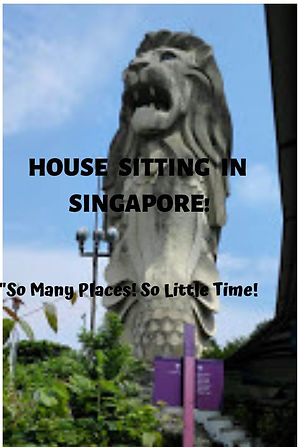HOUSE SITTING IN SINGAPORE.jpg
