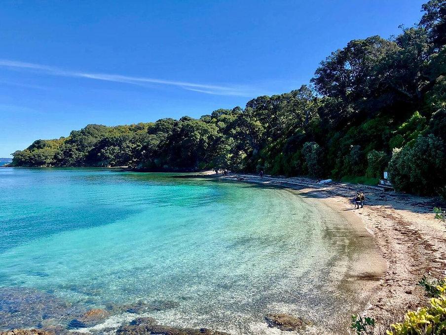 Tiritiri  Matangi Island-Best Auckland day trip