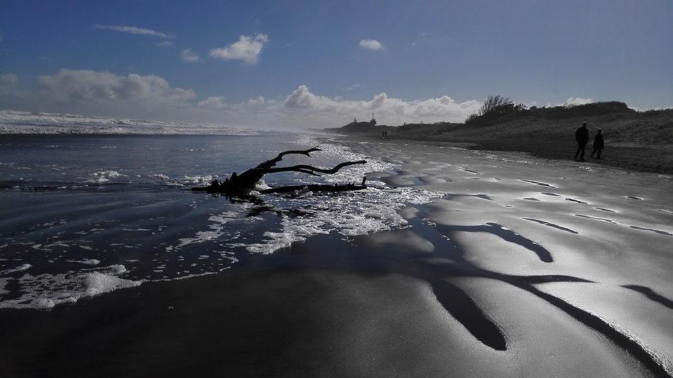 Stunning Muriwai Beach
