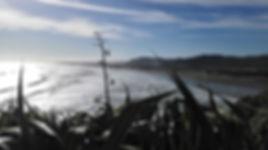 The Long Muriwai Beach