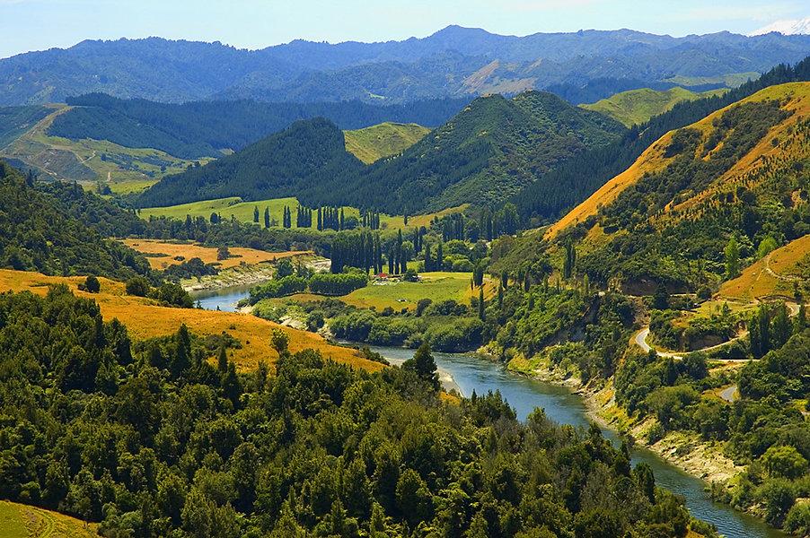 Whanganui River by James Shook.