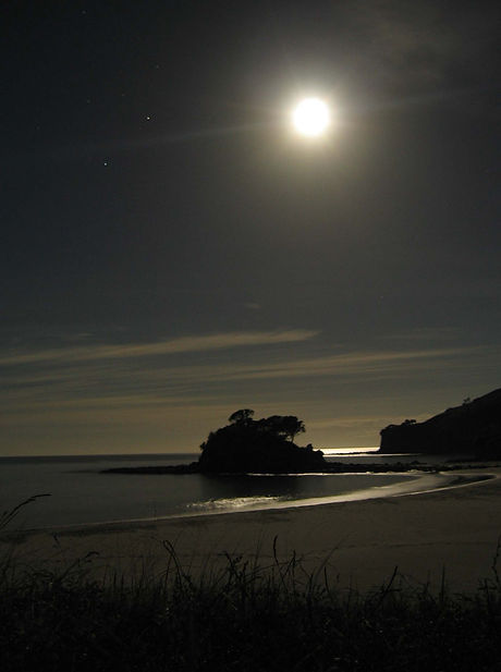 Full Moon, Great Barrier Island, New Zea