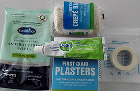 tems for your Travel First Aid kit