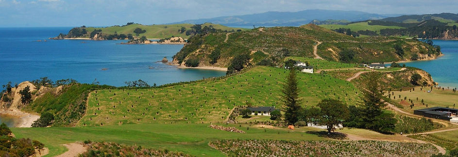 Rotoroa Island BY 100% Pure New Zealand.jpg
