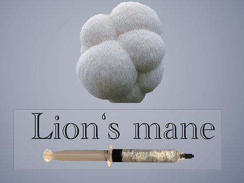 Lions Mane Mushroom Liquid Culture