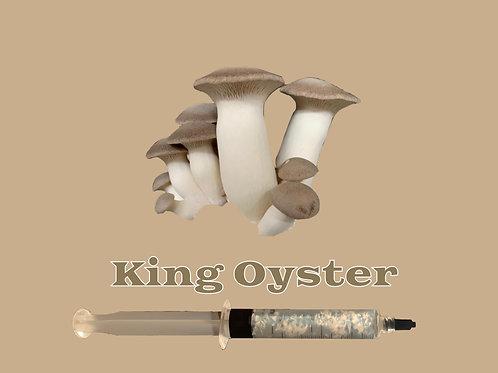King Oyster Mushroom Liquid Culture