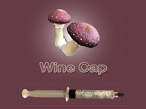 Wine Cap Mushroom Liquid Culture