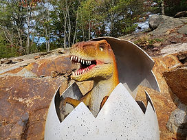 Life-size raptor dinosaur hatching out of an egg at Raptor Falls mini golf course.