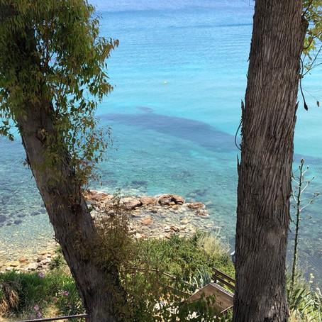 Wildlife in Cyprus