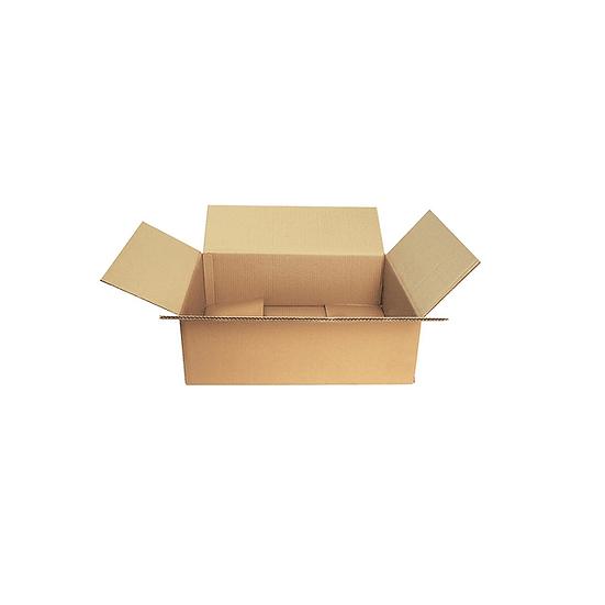 Caja 300x240x110 (sobre americano)