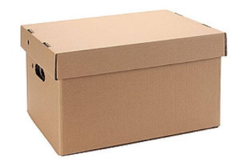 Caja tipo Storbox XL (510x350x310)
