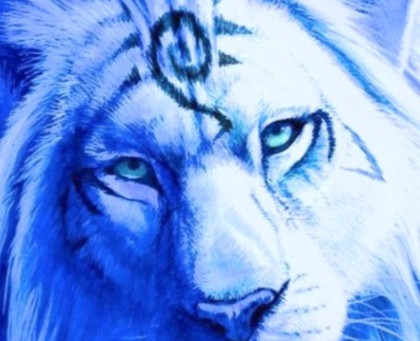 What is the 8-8 Lion's Gate and how can it help me?