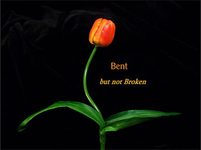 bent-but-not-broken-gail-smith.jpg