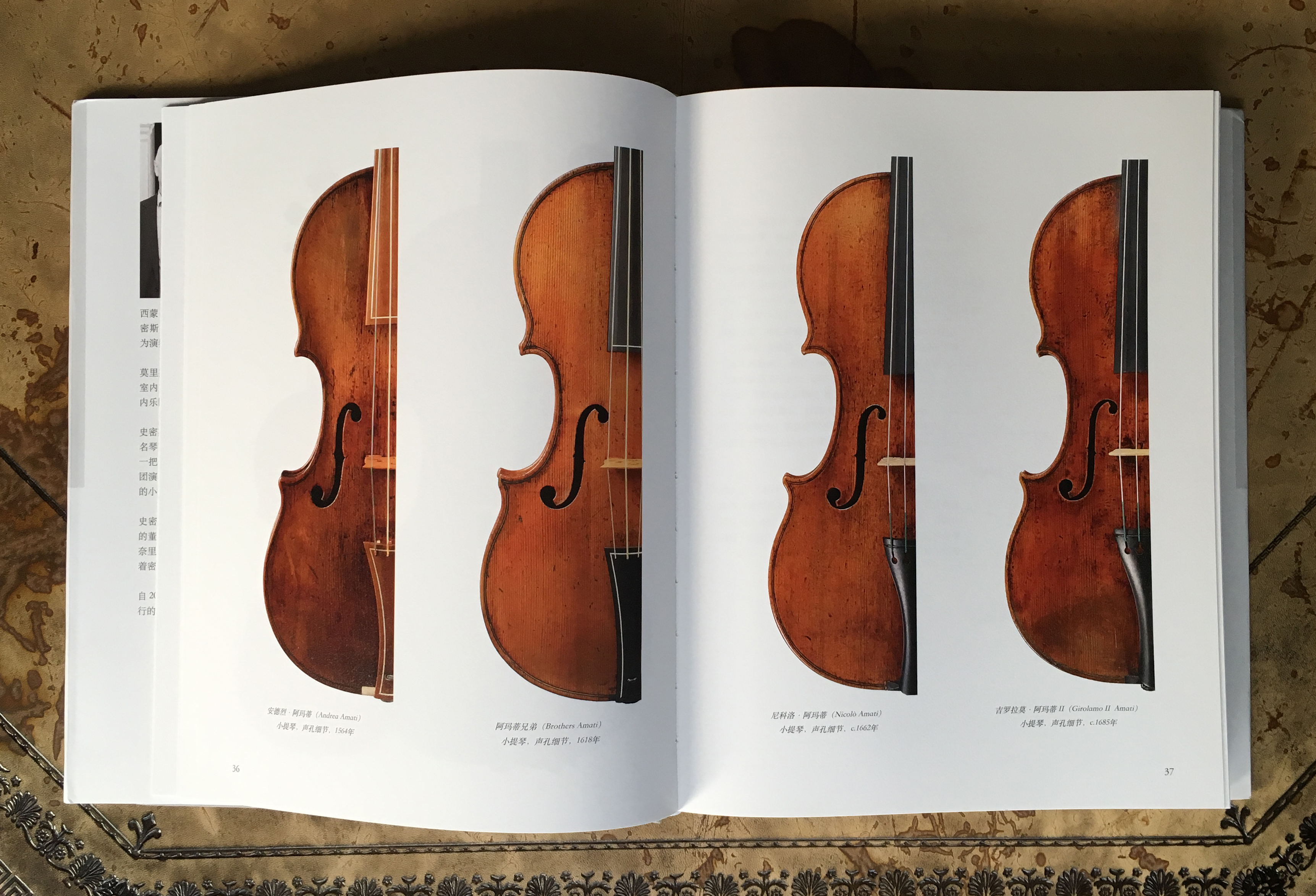 Violin comparative shots