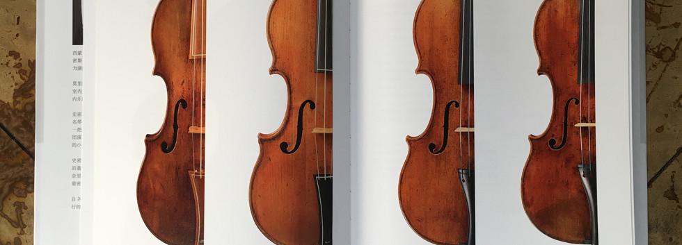 Violin comparative shots.jpg