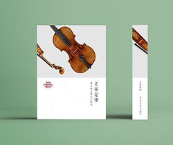 Chinese Book Cover mock up.jpg