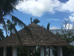 Tahitian Palm Thatch Panels