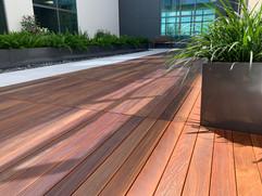 Oiled IPE Deck