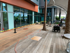 IPE Deck Restoration
