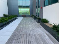 Patina IPE Deck